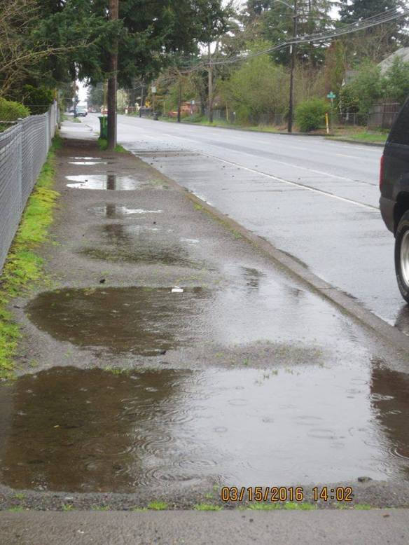 PuddleSidewalks
